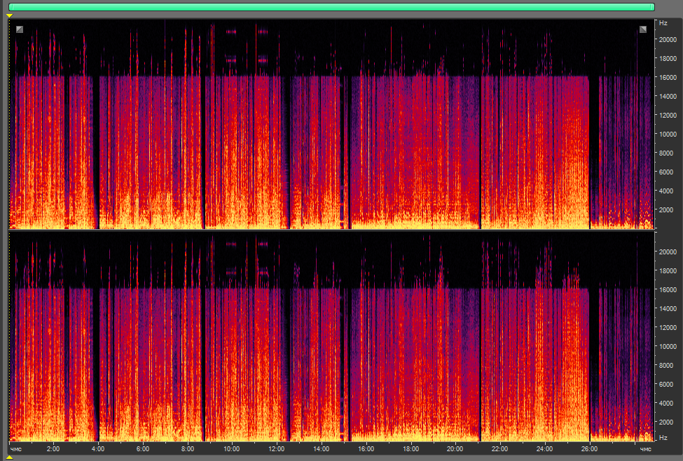 Спектр хорошей современной записи в правильно сделанном mp3 (320 кбит/с, CBR). Частоты ниже 16 Гц срезаны полностью, частоты выше 18 000 — частично